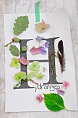 Arrangement of letter H printed on paper and autumnal natural finds (hydrangea petals, acorns, heather, feather)
