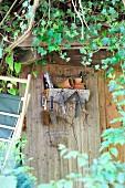 Wandbord an beranktem Gartenhaus - ein Viertelkreis Baumstamm mit praktischen Haken für allerlei nützliches Gerät