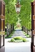 Blick durch geöffnetes Eingangsportal auf Buchsbaum-Beet und herrschaftliche Auffahrtsallee