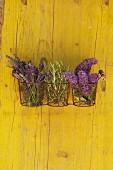 Kräuterzweige, Lavendel und Fliederblüten in Drahtkorb an gelber Holzwand aufgehängt