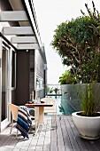 Striped blanket on chair at table opposite white planter of ornamental grasses on wooden terrace