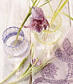 Snake's head fritillary in glass vase