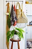Tea towels and kitchen utensils hanging from hooks on wall above house plant on plant stand