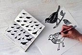 Drawing birds using book of silhouettes as guideline