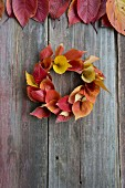 Wreath of autumnal cherry leaves in rustic wooden background