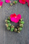 Small wreath of unripe blackberries and bright pink geranium flower on wooden surface