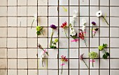 Summer flowers stuck to tiled wall with washi tape