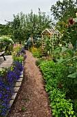 Gravel path between flowerbeds with wooden trellis in background