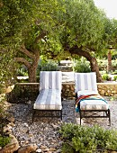 Sun loungers with striped upholstery on gravel terrace in front of gardens