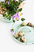 Easter arrangement of quails' eggs and violas