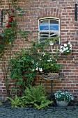 Farn und Pflanztöpfe mit Patina vor der Backsteinfassade eines ehemaligen Pferdestalls mit Originalfenstern