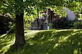 Schützendes Blätterdach einer Kastanie über dem Rasen vor ländlichem Wohnhaus