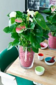 Anthurium in glass vase decorating table