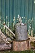 Alte Giesskanne auf Hackstock im Garten