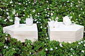 White ceramic vases on cut stone blocks surrounded by bed of wood anemones
