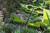 Formgeschnittene Buchshecken und violette Blumen in parkähnlichem Garten