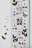 Colourful butterfly prints stuck on wall panel