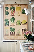 Vintage board with illustrations of various vegetables on wall