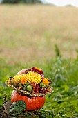 Autumnal flower arrangement in hollowed-out pumpkin outdoors