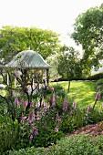 Fingerhut wächts im Parkähnlichen Garten, im Hintergrund Pavillon