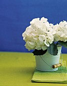 White hydrangeas in white enamel bucket