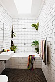 White subway tiles and house plants in narrow bathroom
