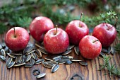 Apples amongst sunflower seeds & larch twigs