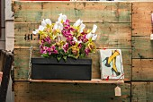 Orchids of various colours and clematis flowers arranged on black shoe box next to framed picture on wooden shelf mounted on vintage board wall