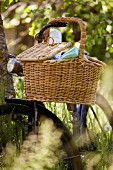 A bicycle with a picnic basket leaning against tree