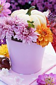 Ornamental squash and dahlias in lilac flowerpot