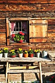 Alpine cabin with decorative flower pots in Salzburg, Austria