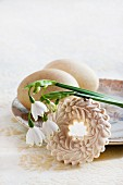 Two blown turkey's eggs on vintage plate with moulded aniseed biscuit and spring snowflake flowers