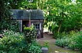Rustic shed in flowering garden