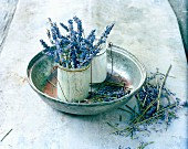 Lavender flowers in bowl & glass pot