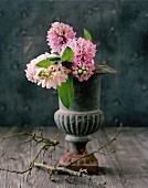 Hyacinth flowers in grey, urn-shaped vase