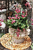 Kalanchoe in white stone vase on rusty garden table