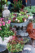 Wreath of succulents on stand amongst potted plants and metal ornaments