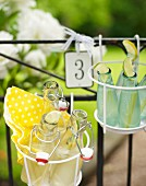 Bottles of lemonade in wire basket hung on garden fence