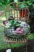 Wreath with house leeks (sempervivum) on vintage metal chair in garden