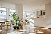 Sunny interior; potted palm trees in front of pillar between open-plan kitchen and fifties-style dining area