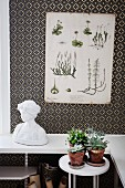 Botanical illustration on wall with decorative, patterned wallpaper above bust of woman and house plants on small table