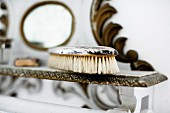 Vintage clothes brush on shelf