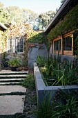 Narrow courtyard with steps and pool of reeds adjoining bungalow