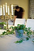 Lit candles in candelabra and house plant on table