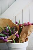 Tulpensträusse in Pink und Violett mit Papier eingewickelt im weissen Blumentopf