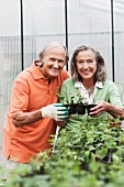 Couple potting plants in greenhouse