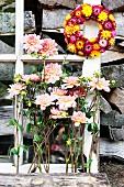 Pink dahlias below wreath of everlasting flowers hanging from lattice window frame