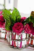Roses and rainbow chard arranged in test tubes