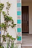 Eingangsbereich eines Hauses verziert mit dekorativen Wandfliesen & Kletterpflanze