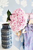 Hydrangea bloom in ornate, retro ceramic vase